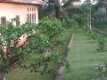 Kamerun_19